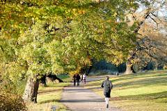 Spaziergang im Park - Bilder aus Hamburger Grünanlagen; Weg unter Herbstbäumen im Jenischpark in HH-Othmarschen.