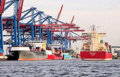 Containerbrücken des HHLA Container Terminals Burchardkai - Containerfeeder liegen am Kai - ein Feederschiff läuft in den Waltershofer Hafen ein.