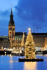 Weihnachtsbaum auf der Binnenalster - Alstertanne.