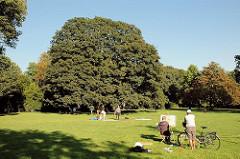 Wiese im Sommer im Nienstedtener Hirschpark - ein Maler hat seine Staffelei aufgestellt und arbeitet in der Sonne.