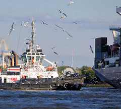 Ein Schlepper wird bei seiner Arbeit im Hamburger Hafen von einem Schwarm Möwen umschwärmt.