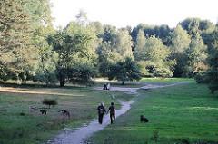 Wiese als Hundeauslauffläche im Niendorfer Gehege - Spaziergänger mit Hunden im Wald.
