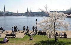 Promenade an der Binnenalster Hamburg Panorama