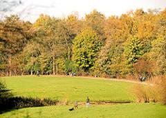 Grünanlage am Geelenbek Nebengraben B in Hamburg Lokstedt - Spaziergänger in der Herbstsonne - Herbstwald.
