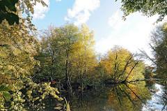 Stadtteilfotos von Hamburg Bergstedt Bezirk Wandsbek Herbstbäume am Rodenbeker Teich