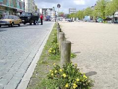 Löwenzahn blüht auf dem Spielbudenplatz - Sandplatz an der Reeperbahn von Hamburg St. Pauli vor dem Umbau (2002