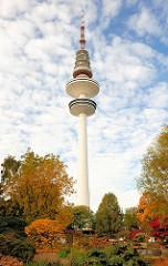 Hamburger Telemichel / Fernsehturm - Sträucher mit roten und gelben Herbstblättern in Planten un Blomen - Bilder aus den Hamburger STadtteilen.