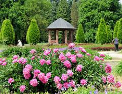 Pavillon im Schulgarten des Volksparks in Hamburg Bahrenfeld, Bezirk Altona; üppig blühende Bauernrosen - Blumenbeete im Schulgarten.