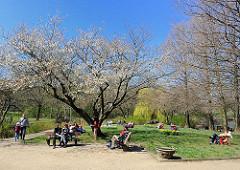 Stadtpark Winterhude Liebesinsel Frühling
