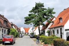 Nebenstrasse in Wandsbek Gartenstadt - Einzelhäuser säumen die Strasse - eine grosse Kiefer steht in einem der Vorgärten.