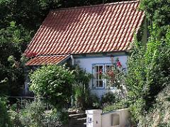 Bilder aus Hamburg Blankenese Wohnhaus im Treppenviertel Vorgarten mit Rosen.