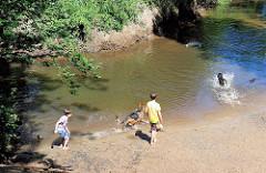 Kinder und Hunde spielen am Ufer der Alster im Wulksfelder Wald - Gemeinde Tangstedt.