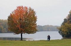 Herbst in Hamburg Billstedt - Baum mit Herbstlaub im Oejendorfer Park - Oejendorfersee.