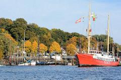 Museumshafen Oevelgoenne - Feuerschiff Elbe 3; Bäume mit Herbstlaub am Ufer der Elbe.