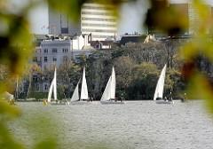 Blick durch Herbstblätter über die Aussenalster Richtung Hamburg St. Georg, Strasse An der Alster; Segelboote mit weissen Segeln fahren im Wind in der Nähe des Alsterufers.