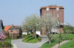 Ehemaliges Mühlengebäude auf dem Deich von Hamburg Neuenfelde - jetzt Wohnhaus - blühende Bäume auf dem Deich.