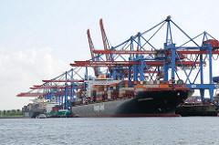 Containerschiffe im Hamburger Hafen an ihrem Liegeplatz unter den Containerbrücke vom Terminal Hamburg Altenwerder.