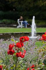 Sprudelnder Brunnen im Rosengarten des Hamburger Stadtparks.