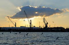 Blick über die Elbe zum Kleinen Grasbrook im Hamburger Hafen - Abendstimmung. Die Abendsonne strahlt hinter einer Wolke auf Kräne am Ufer der Elbe.