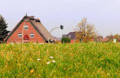 Wohnhäuser mit Reet gedeckt hinter dem Aue-Hauptdeich in Hamburg Finkenwerder.
