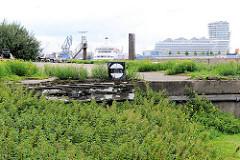 Alte Gleisanlage mit Prellbock - Wildkraut hat die Gleise der Güterbahn überwuchert - im Hintergrund ein Kreuzfahrtschiff am Hafencitykreuzfahrtterminal und das Unilevergebäude und Wohnhochhaus.