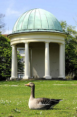 Pavillon in Eppendorfer Haynspark - im Vordergrund sitzt eine Graugans auf dem Rasen. Bilder aus Hamburg Eppendorf.