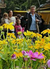 Goldbekmarkt am Goldbekkanal - Blumenstand auf dem Wochenmarkt.