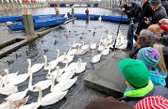 Alsterschwäne sind mit Booten zur Kleinen Alster bei der Hamburger Rathausschleuse getrieben worden - dort sollen sie in Boote verladen werden, die die Tiere zum Winterquartier des Eppendorfer Mühlenteichs bringen sollen. Schaulustige und die Hamburg