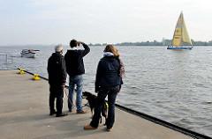 Segelschiffe fahren unter Segel oder mit Hilfsmotor die Elbe hinab - eine Familie mit Hund beobachtet die Boote auf dem Wasser.