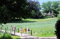 Spaziergängerinnen im Stadtpark Harburgs überqueren ein Feuchtbiotop über einen Steg im Harburger Stadttpark.