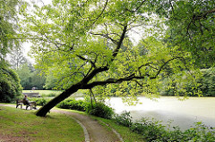 Ohlsdorfer Friedhof - mit fast 400 Hektar der größte Parkfriedhof Europas - Teich mit Bäumen, Holzbank mit Parkbesucher am Wasser.