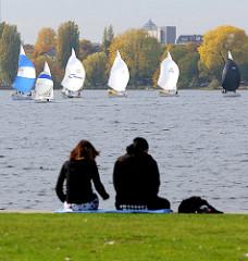Alsterufer in Hamburg Hohenfelde - Segelboote auf der Aussenalster - Herbstbäume am Alsterufer.