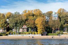 Elbstrand in Hamburg Othmarschen - Oevelgoenne; Wohnhäuser zwischen hohen Bäumen mit Herbstlaub.