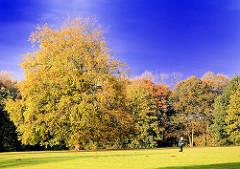 Goldener Herbst - Bäume in Herbstfärbung - Spaziergänger auf einer Wiese im Jenischpark im Hamburger Stadtteil Othmarschen.