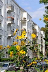 Wohnstrasse in Hamburg Eimsbüttel - gründerzeitliche Hausfassaden mit Balkons - Blumen wachsen am Strassenrand.
