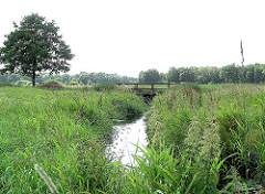 Schmaler Lauf der Alster zwischen Wiesen im Naherholungsgebiet Oberalsterlster bei Henstedt Ulzburg.