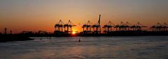 Sonnenuntergang am Hamburger Terminal Altenwerder Containerkräne