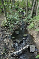 Bachlauf der Mellingbek fliesst durch einen Wald in Hamburg Lemsahl Mellingstedt.