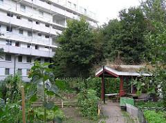 Garten mit Gartenhaus zwischen Hochhäusern von HH-Steilshoop.