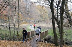 Holzbrücke über die Saselbek an den Volksdorfer Teichwiesen.