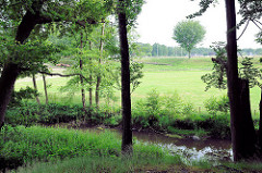 Lauf der Alster im Naherholungsgebiet Oberalster, Gemeinde Tangstedt - Kreis Stormarn.