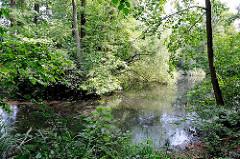 Grünanlage mit Teich - Bäume am Wasserrand - Bilder aus Hamburg Rönneburg.