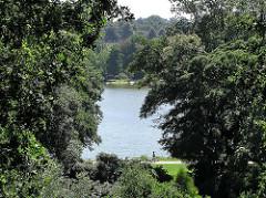 Stadtpark Hamburg Harburg - Bäume am Aussenmühlenteich.