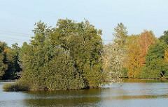See am Jenfeder Moor - Insel mit Bäumen, am Seeufer Bäume mit Herbstlaub.
