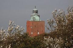 Hamburgs historsche Bauten - Festungsturm + Leuchtturm von Hamburg Neuwerk.