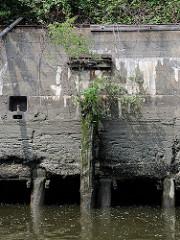Verputzte Kaimauer im Hamburger Hafen; eingelassener Eisenpoller und abgebrochener Streichdalben, mit jungen Bäumen und Gräsern bewachsen. Bei Niedrigwasser zeigen sich die Baumstämme, die das Fundament der Kaianlage bilden.
