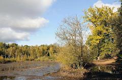 Naturschutzgebiet Eppendorfer Moor - Flachmoor, Schutzgebiet. Wasserfläche mit Baumbestand.