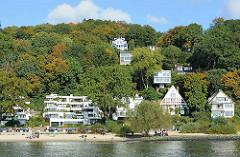 Hamburg im Herbst - Fotos aus dem Stadtteil Blankenese, Herbstbäume am Elbhang -- Wohnhäuser am Falkensteiner Ufer.