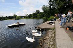 Tretboot und Schwäne auf dem Wasser des grossen Sees im Hamburger Stadtpark.