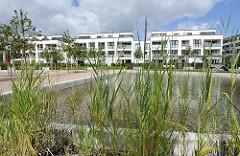 Teich mit Gräsern - moderne Wohnbebauung Areal der Husarenkaserne.
